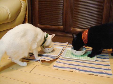 楽しい晩餐。